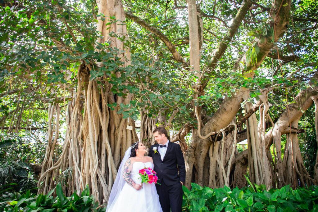 Brisbane Botanic Gardens Wedding