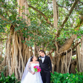 Brisbane Botanic Gardens Wedding